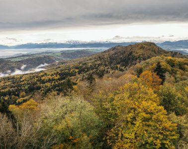 Blick über den herbstlichen Naturerlebnispark Sihlwald, in dessen Kernzone freie Naturentwicklung gilt. Im Hintergrund die Urner und Glarner Alpen. Foto: Bruno Augsburger I bergundsteigen.blog