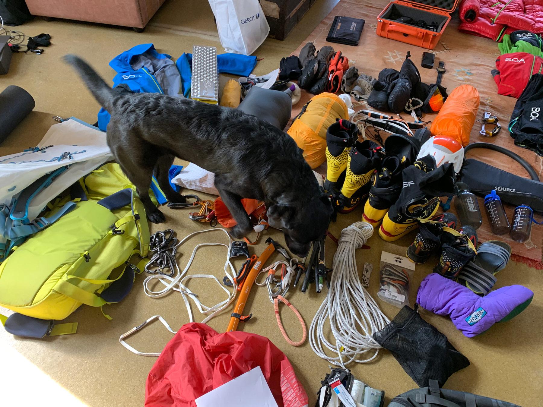 Kompetente Unterstützung beim Packen, Max Berger I bergundsteigen.blog