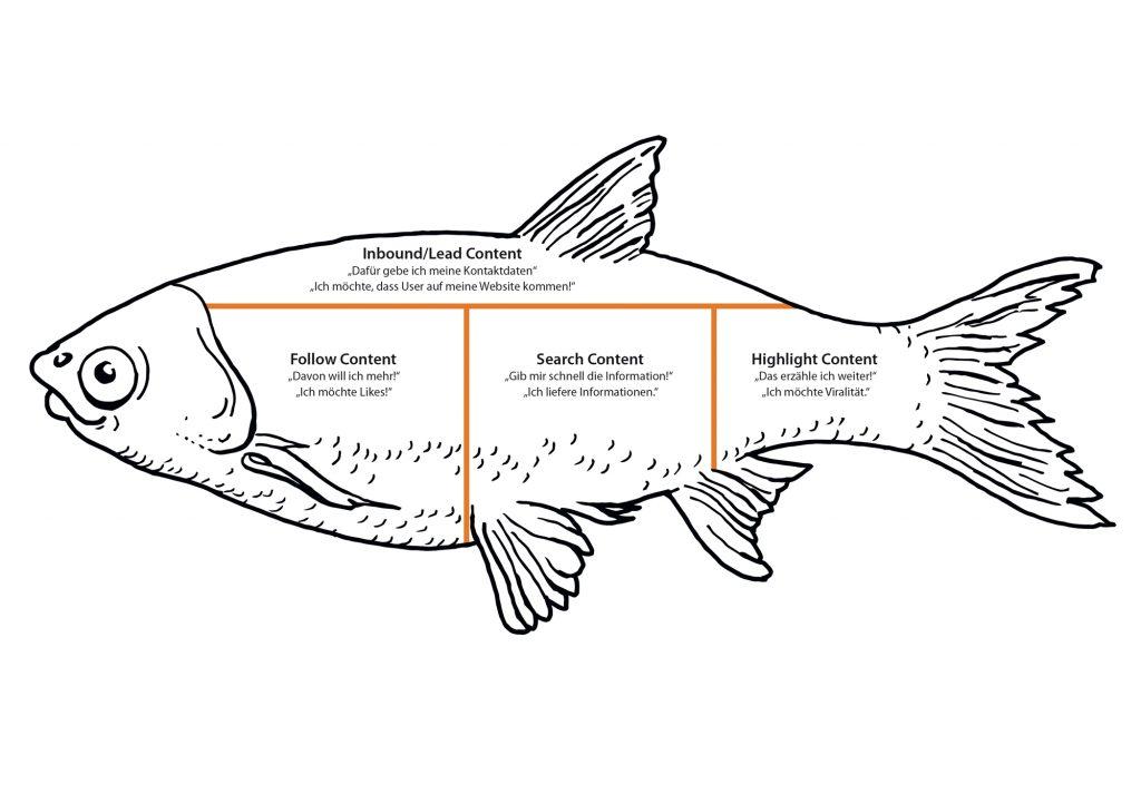 Fish Modell von Mirko Lange, Illu by Roman Hösel I bergundsteigen.blog