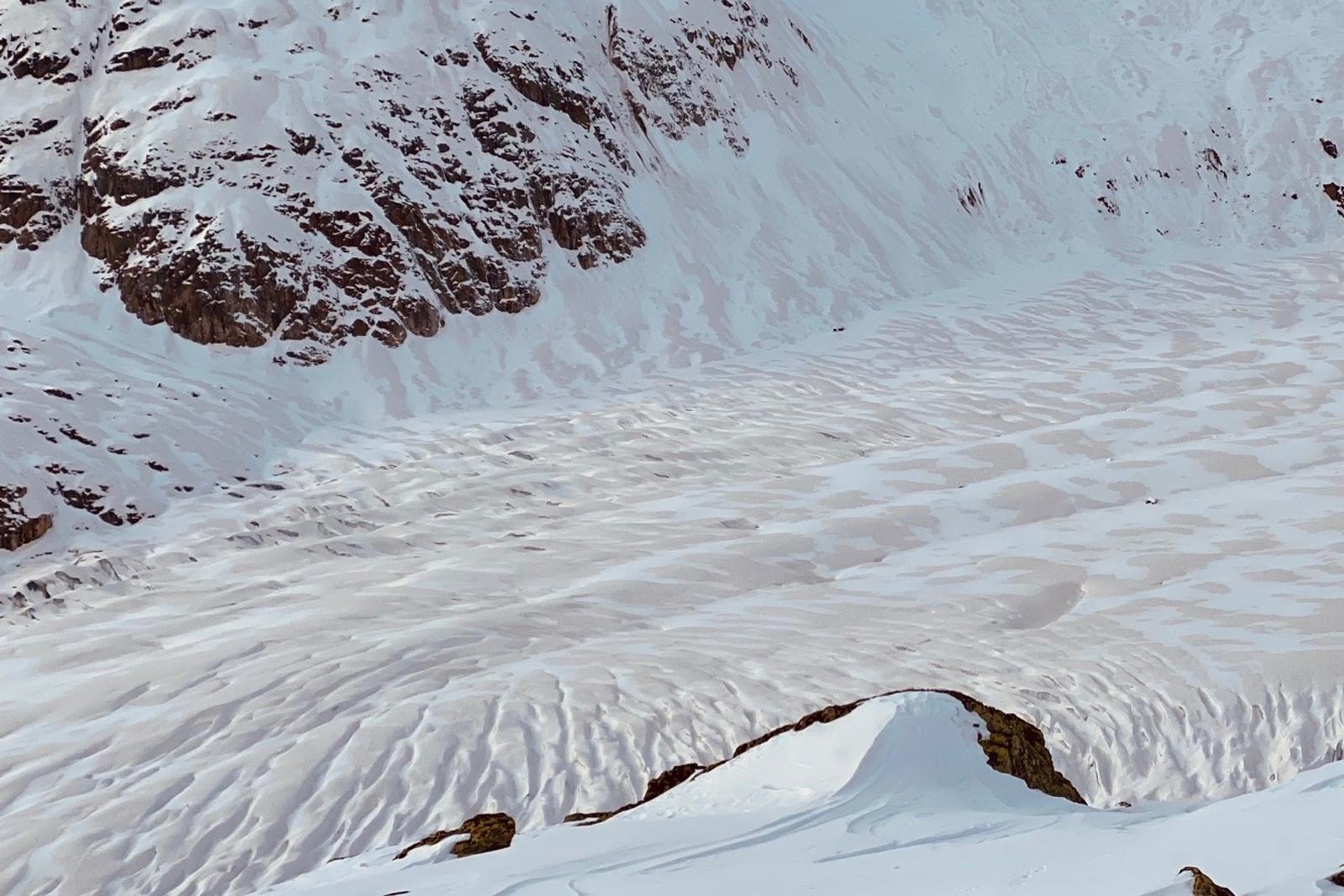 Grosser Aletschgletscher (VS) im Tigerkleid: Die Kruste, die vom Saharastaub bräunlich gefärbt wurde, war sehr markant. Nur in den Mulden, wo neuer Schnee lag, wurde sie weiss überdeckt. Foto: H. Lauber/09.02.2020