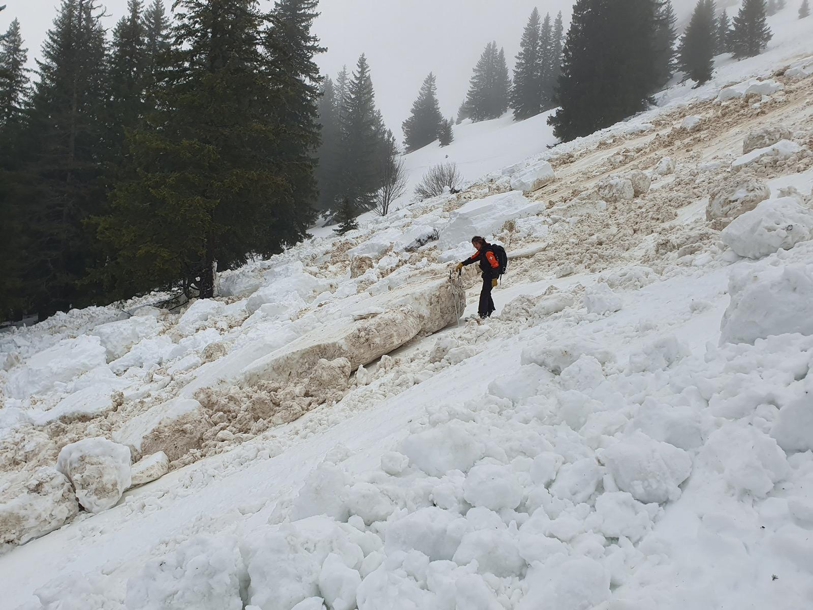 Am Freitag 31.01.2020 gingen vielerorts Nass- und Gleitschneelawinen ab. Das Bild wurde auf der Nordseite des Le Moléson (1.600 m, Gruyéres) gemacht. Foto: B. Grandjean/31.01.2020