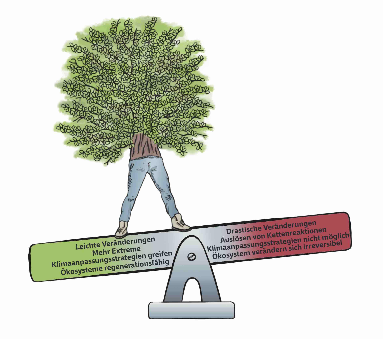 Abb. 7 Solang der Scheitelpunkt der Wippe nicht überschritten wird, ändert sich wenig. Illustration: Roman Hösel
