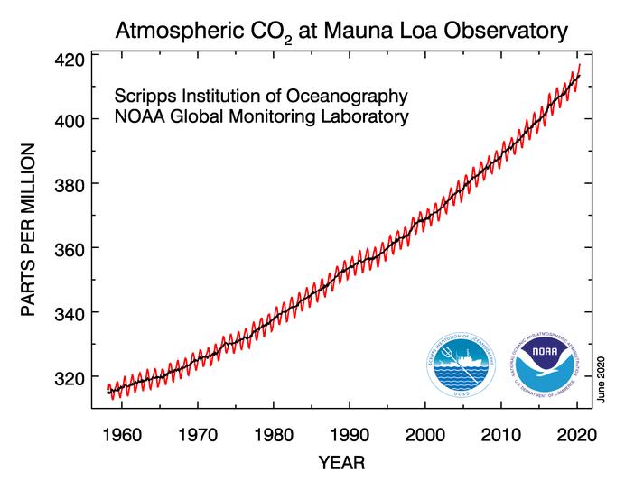Der Trend des globalen CO2-Anstieges wird durch den Shutdown praktisch nicht beeinflusst. Grafik: Mauna Loa Observatory, https://www.esrl.noaa.gov/gmd/ccgg/trends/