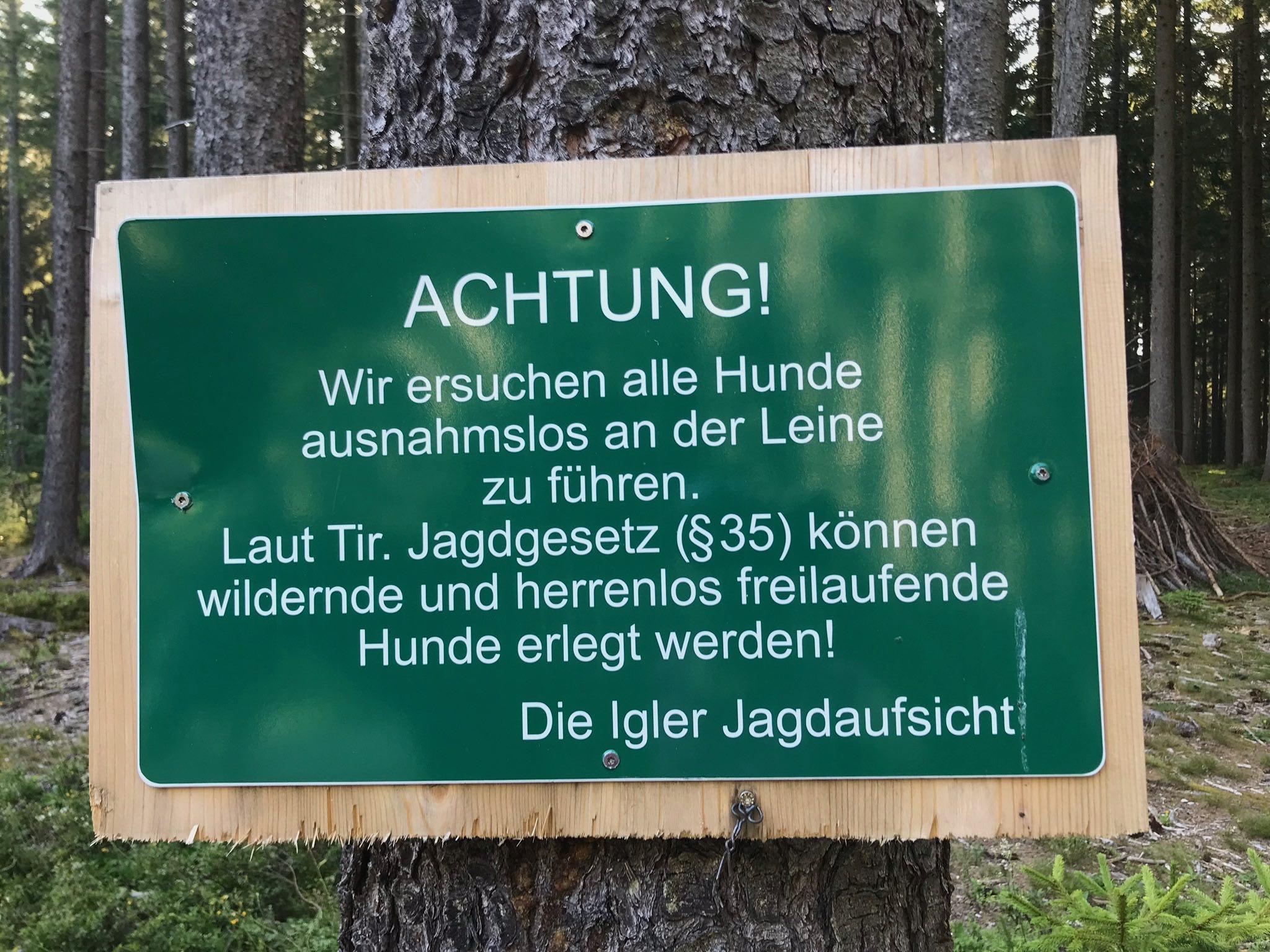 Freilaufende Hunde dürfen gemäß Jagdgesetz vom Jäger unter bestimmten Umständen erschossen werden. © Christina Schwann I bergundsteigen.blog