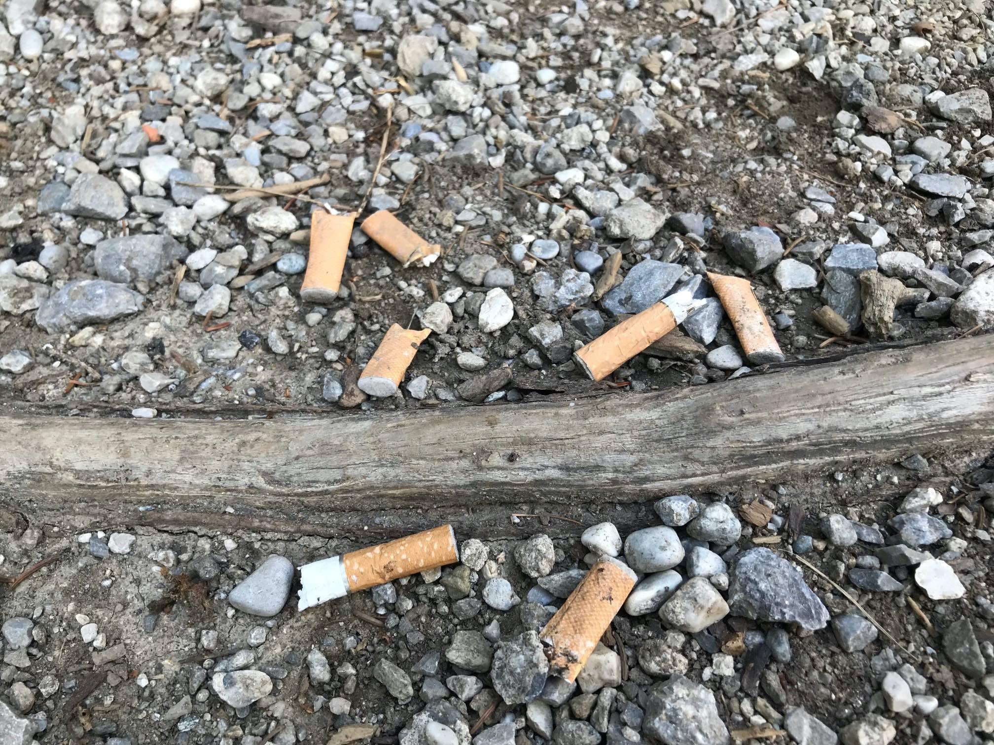 Zigarettenstummel sind kein Bio- sondern Sondermüll. © Christina Schwann I bergundsteigen.blog