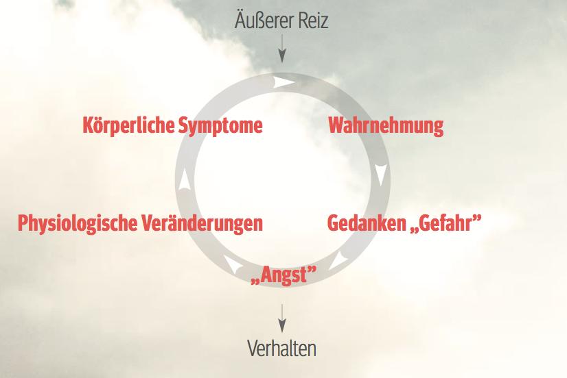 """Abb. 1 Der """"Teufelskreis"""" der Angst."""